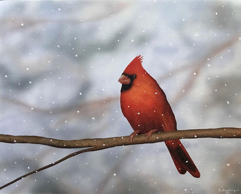 Waiting Cardinal