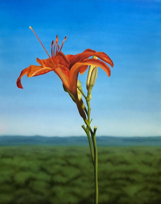 Lily With Distant View Of Hills