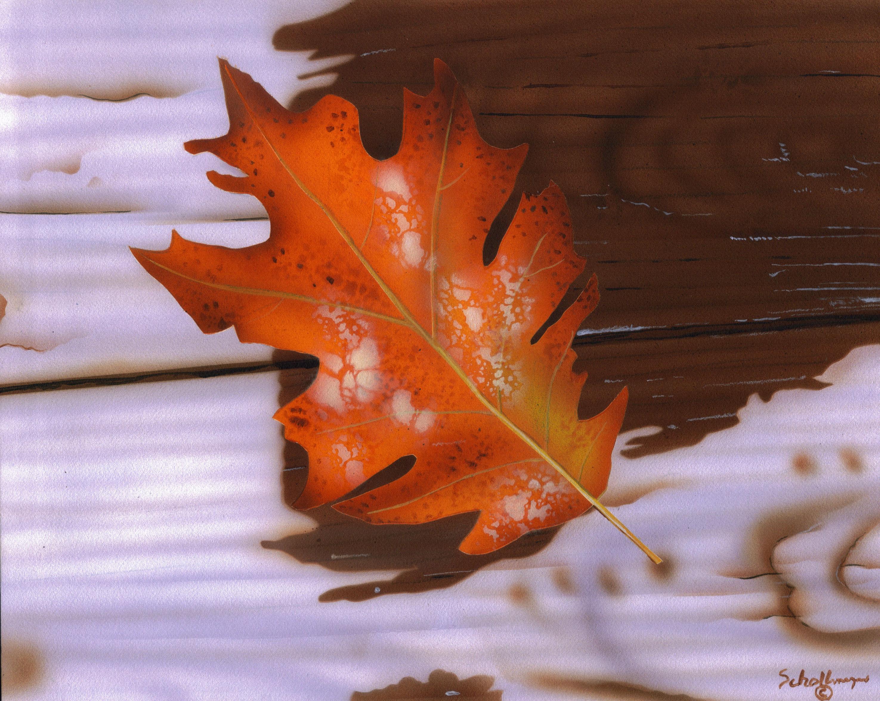 Autumn Leaf (Rainy Afternoon)