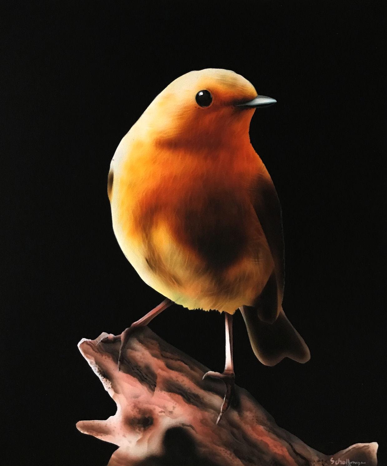 Evening Robin