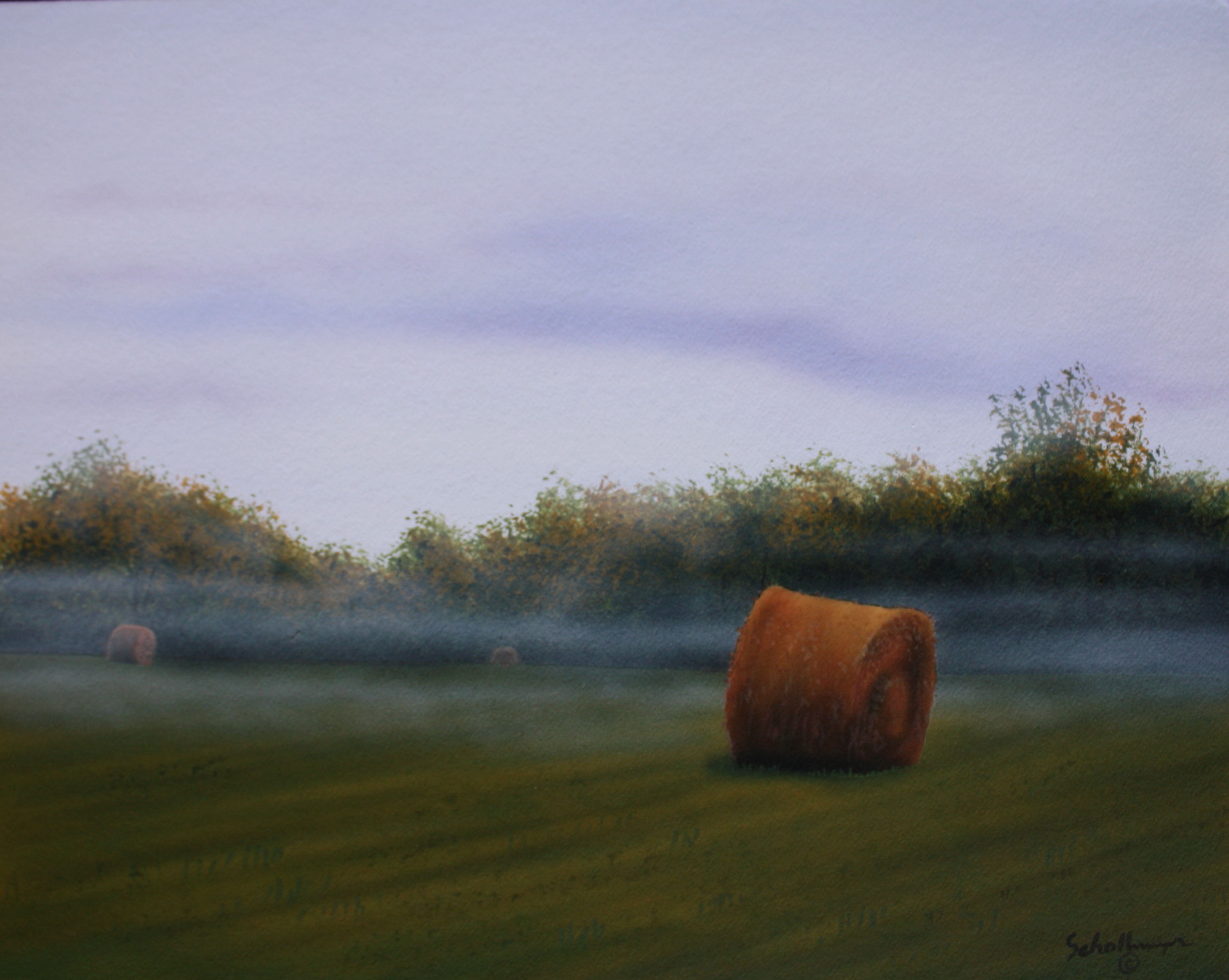 Foggy Morning Hay Field