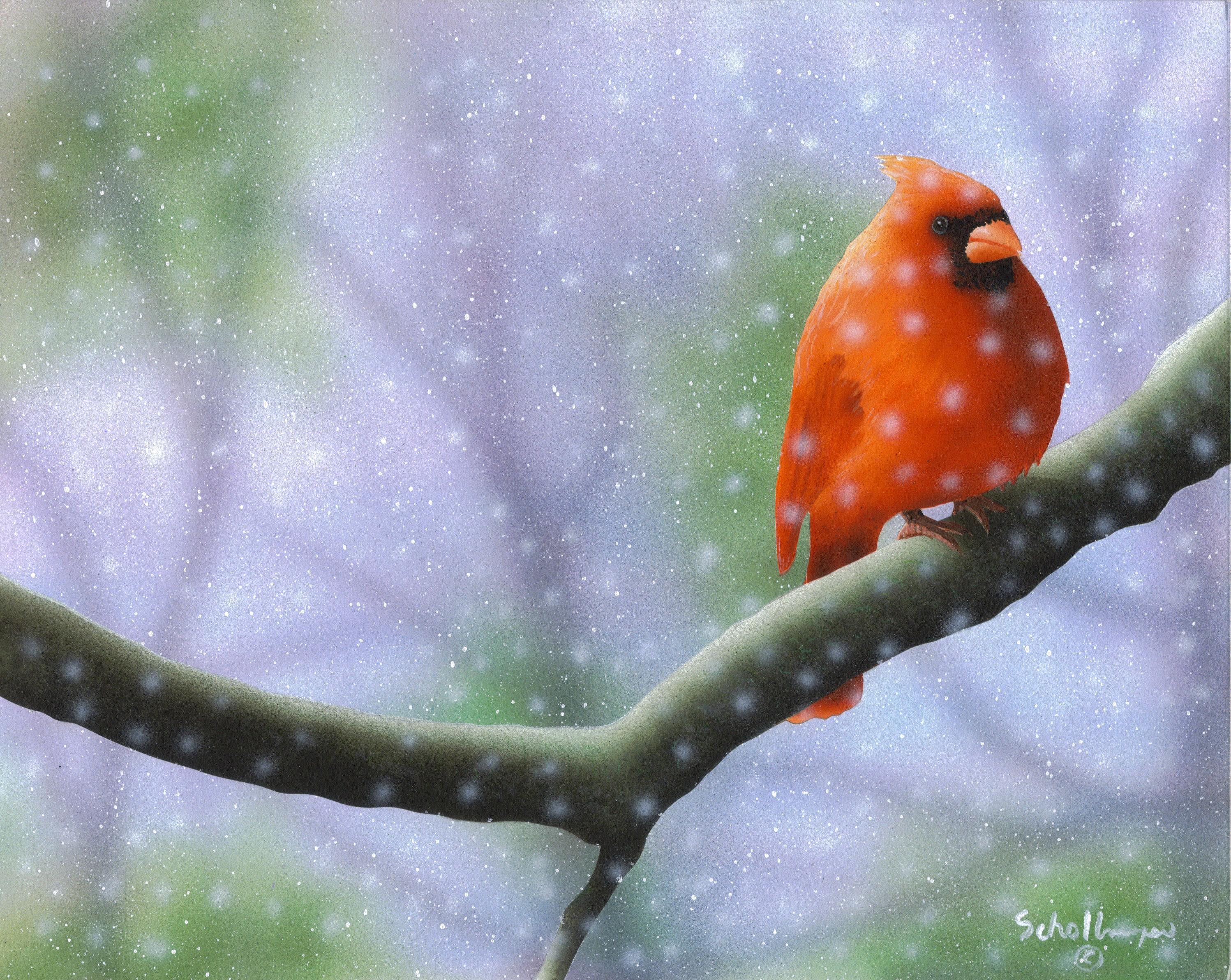 Late Winter Perch