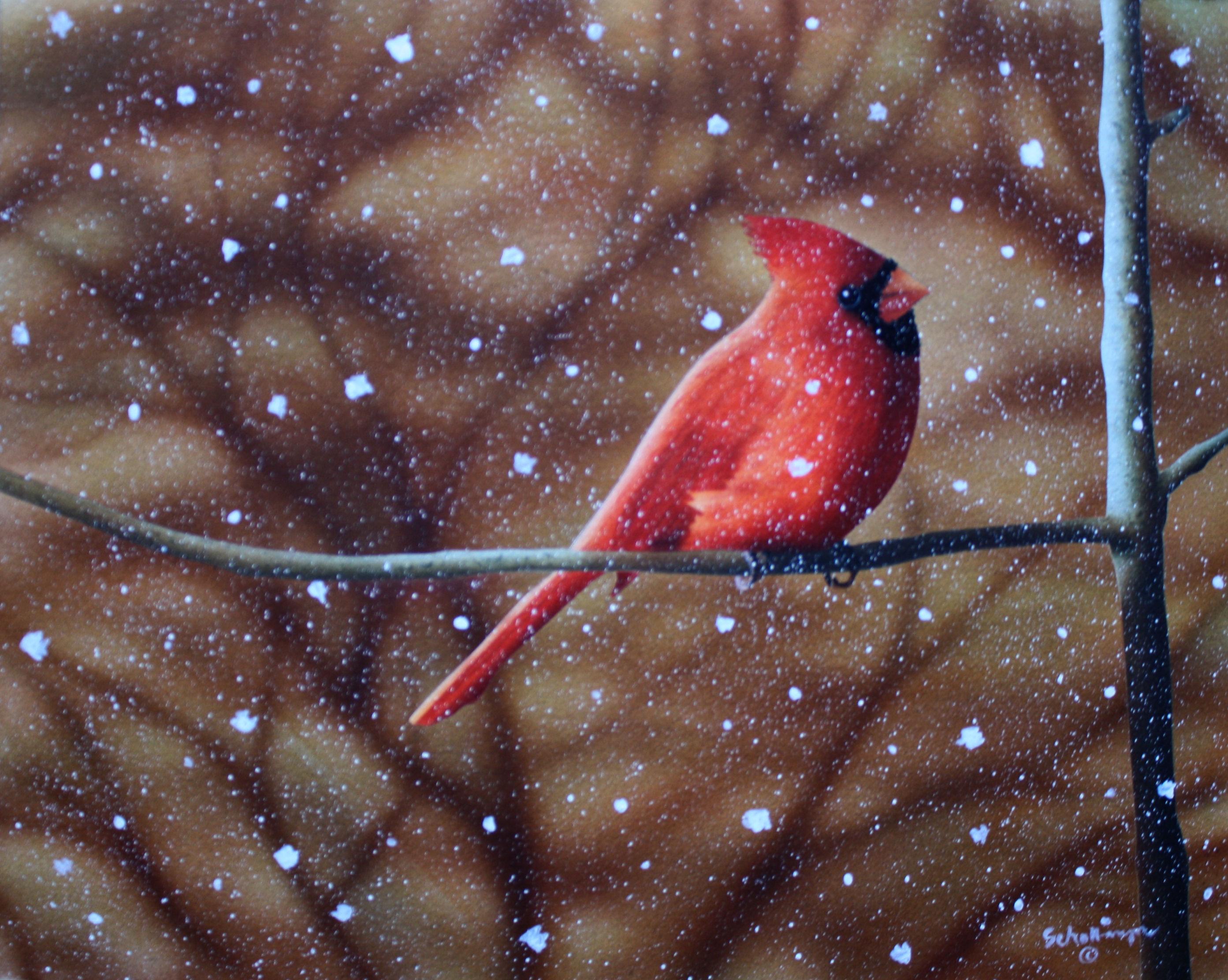 Mid-Winter  Snowfall