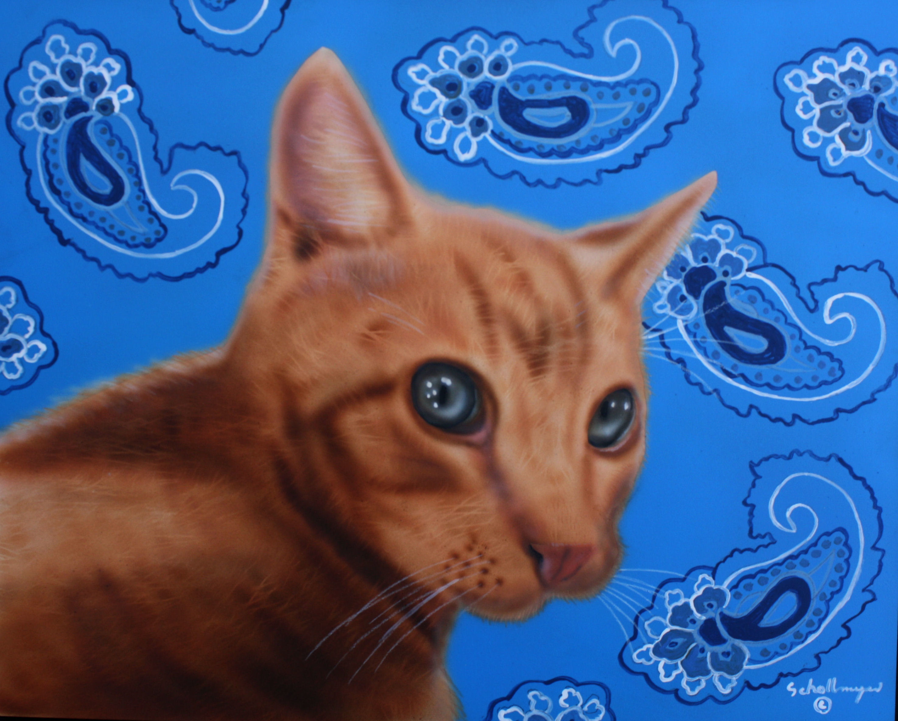 Paisley Feline
