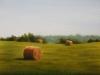 The Southridge Hayfield